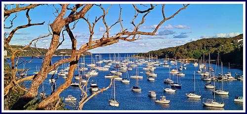fairlight fairlighttomanlywalk fairlightforeshore manly boats yachts sydneyharbour northharbourwalk lauderdaleavenue