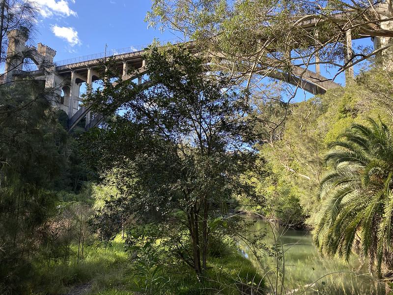 Long Gully Bridge from below