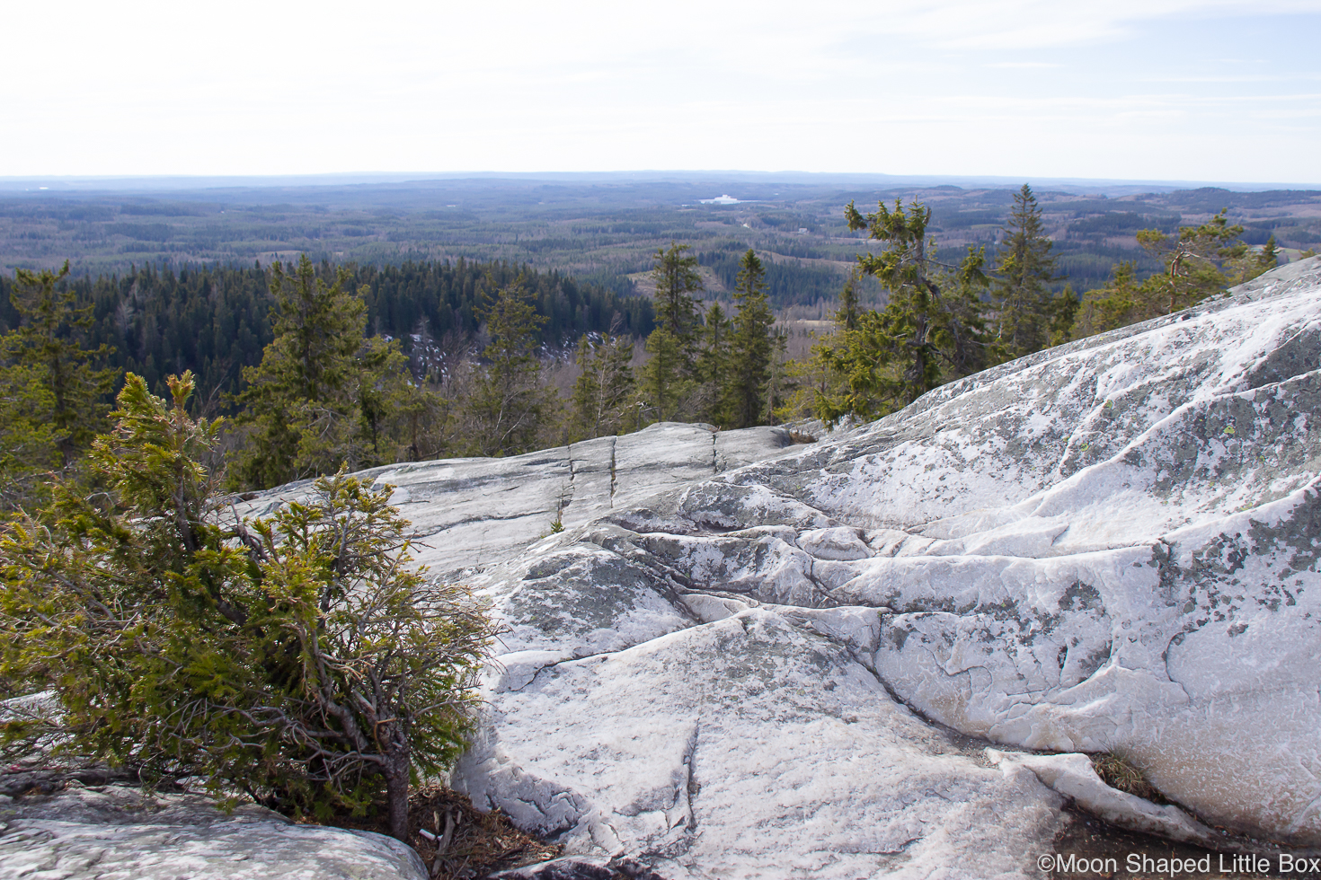 Kolin-kalliot-nakoalakalliot-Lieksa-3