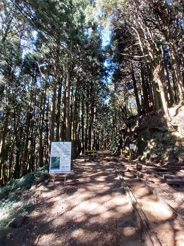 Mt. Data: fork to 眠月線 Mianyue Xian Trail