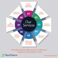 Software development services- Bestpeers Infosystem