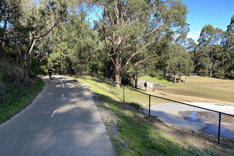 Artarmon Reserve walking track