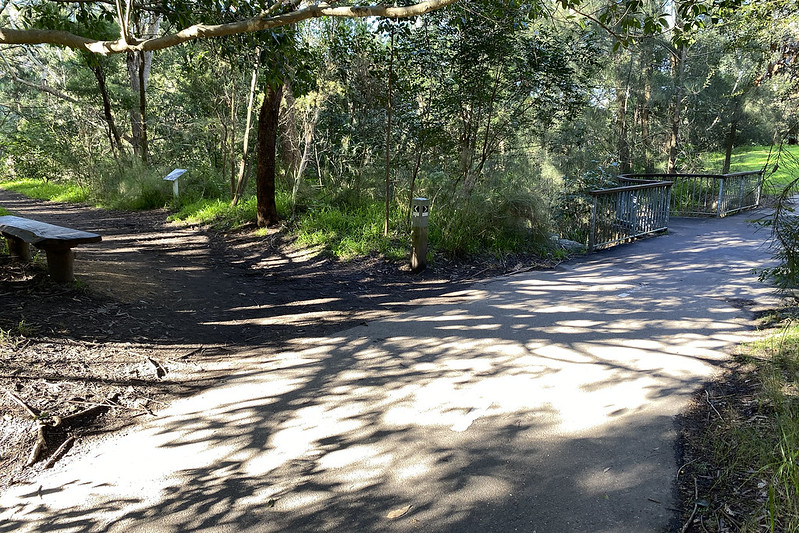 Flat Rock Gully Walking Track