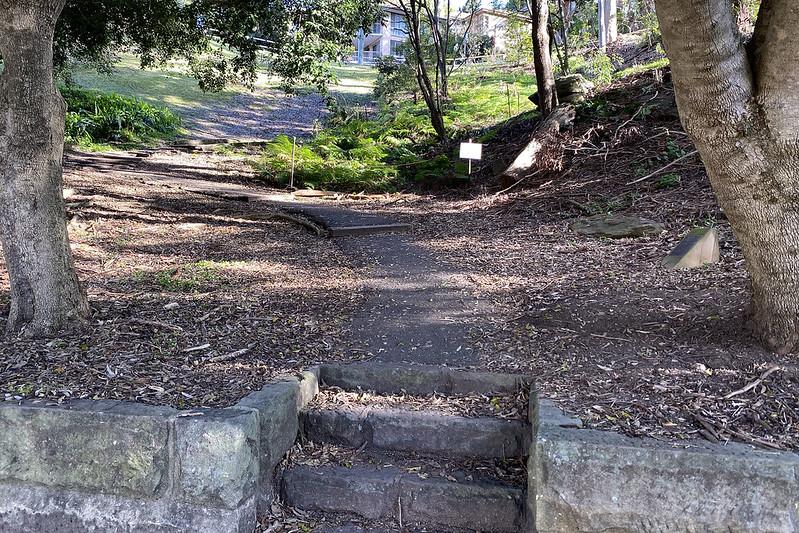 Judith Ambler Reserve steps