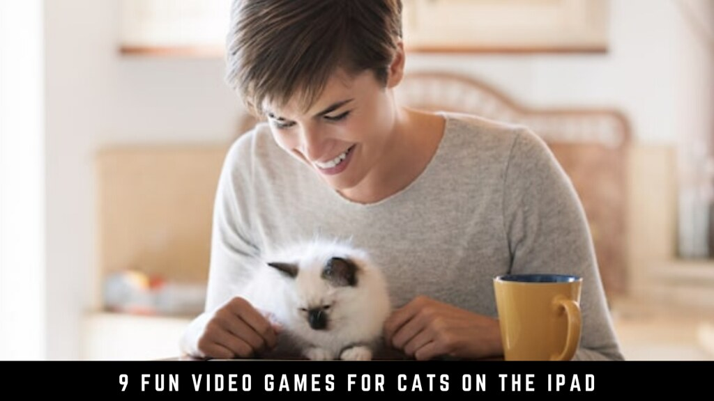 9 Fun Video Games for Cats on the iPad