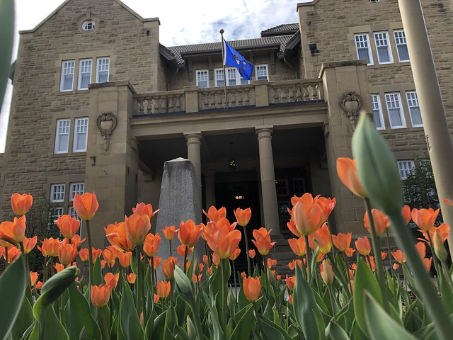 Alberta Liberation 75 Tulip Garden in Bloom