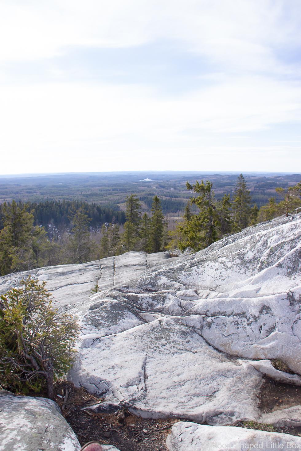 Kolin-kalliot-nakoalakalliot-Lieksa-maisemakuva