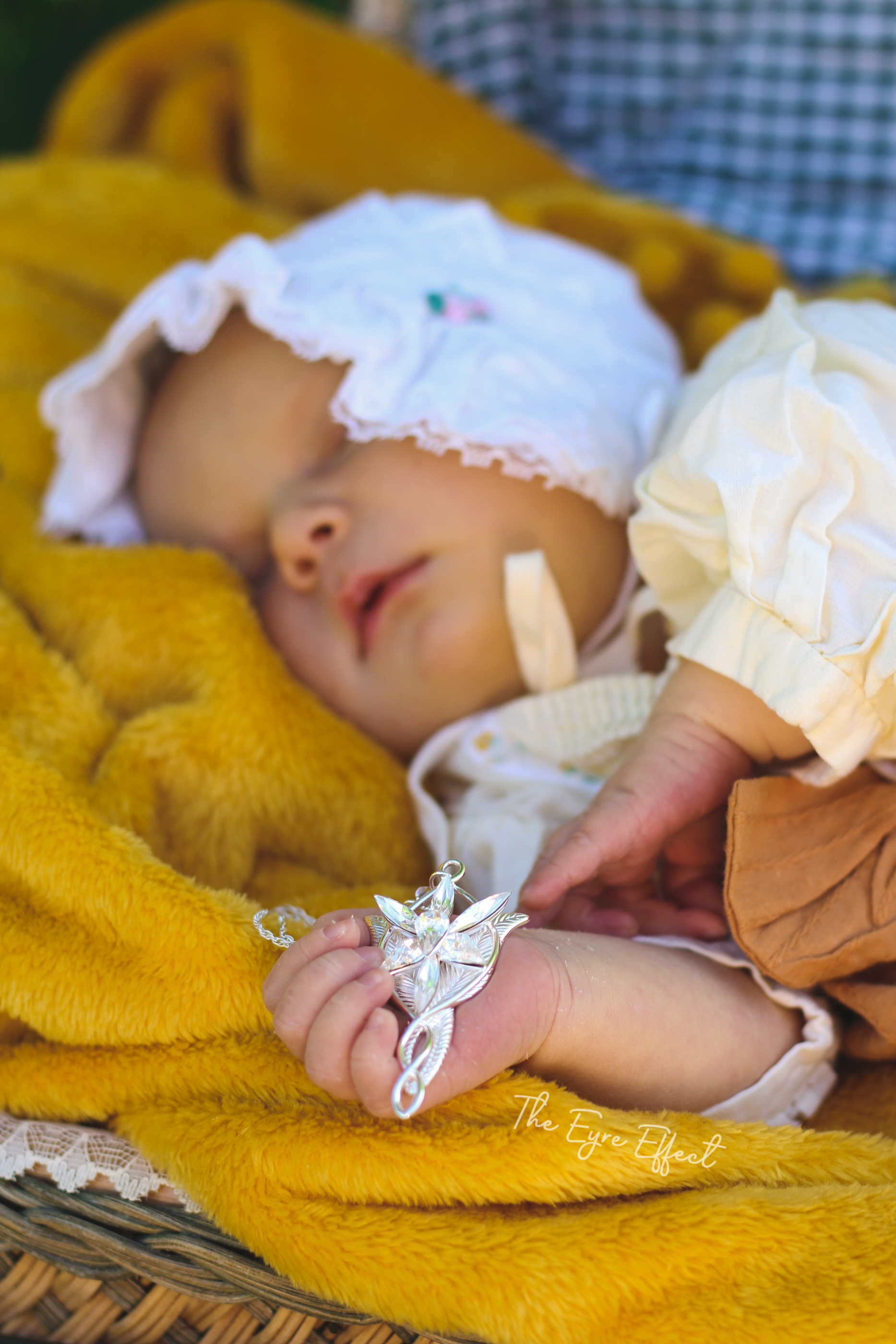 Lord of the Rings Newborn Photoshoot