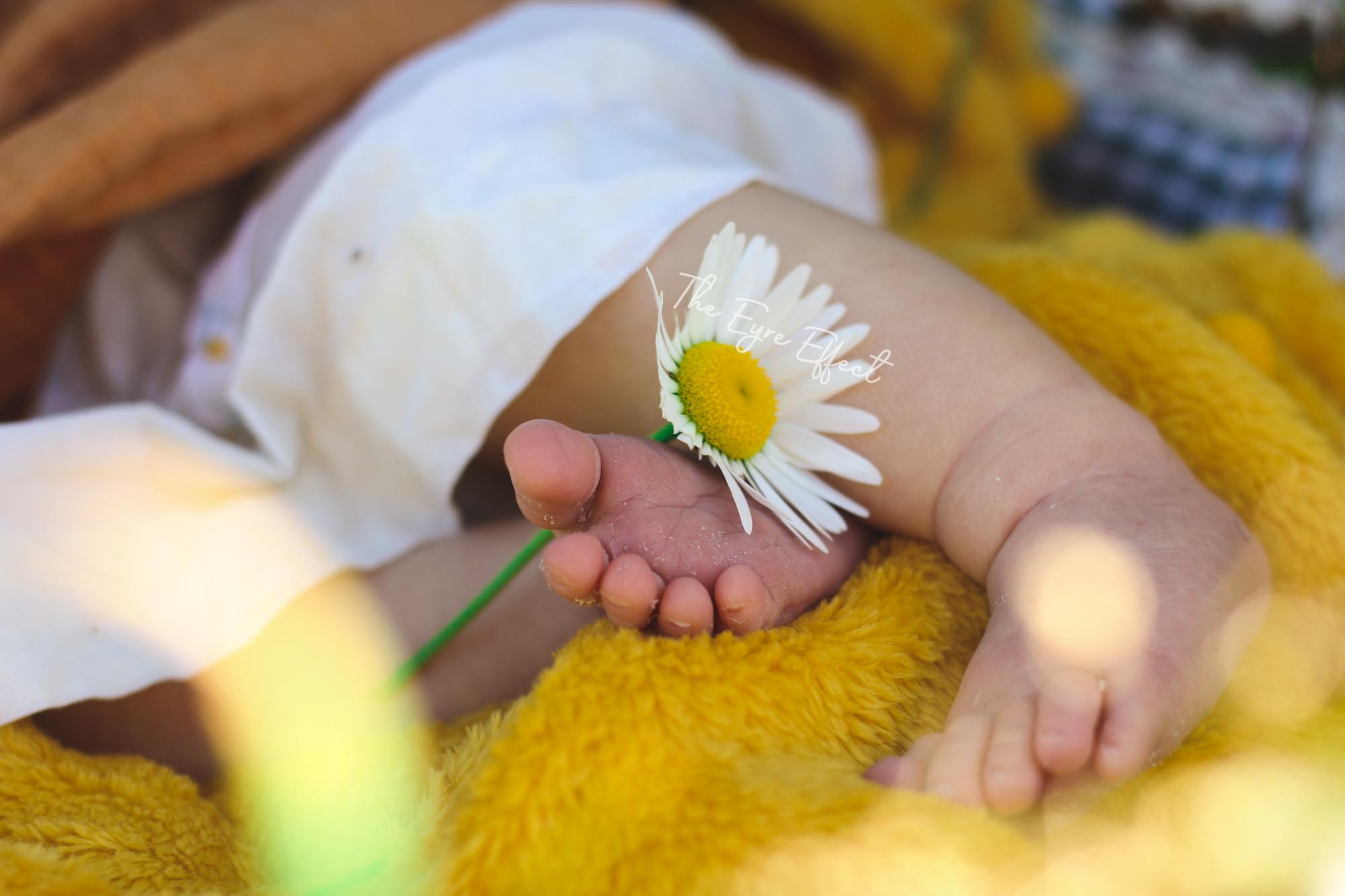 Nature themed newborn photoshoot