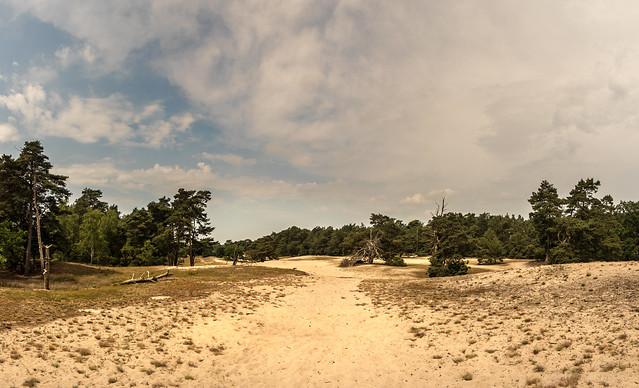 Dünenlandschaft im Binnenland