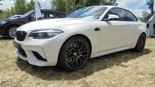 2019 BMW M2 Photo