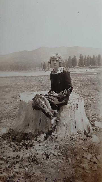 Jeune femme au regard limpide sur une souche d'arbre