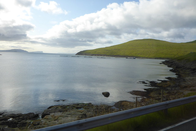 View from bus 300