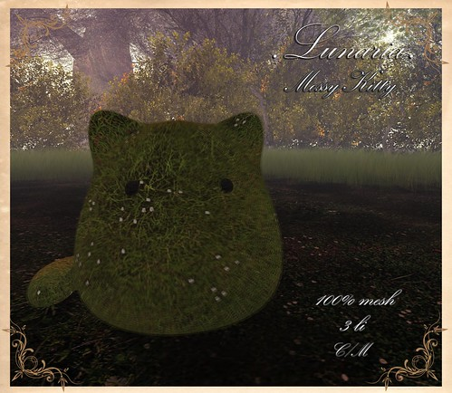 Mossy Kitty Group Gift