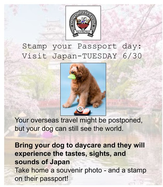 Japan - stamp passport