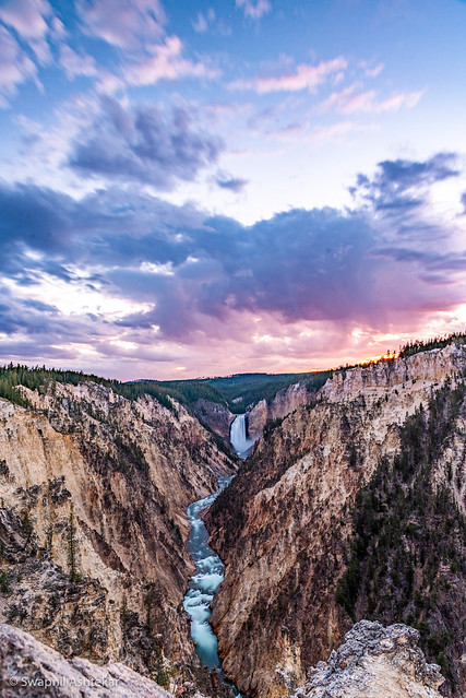 Yellowstone river flowing through the steamy canyon of pastel yellow, pink and orange color and that sunset 🌅 made the perfect view from Brink of Lower Falls