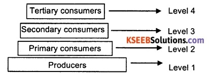 KSEEB Class 10 Science Important Questions Chapter 15 Our Environment 3