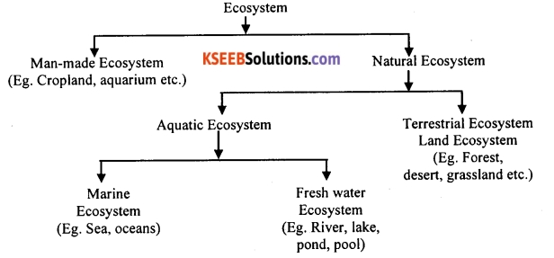 KSEEB Class 10 Science Important Questions Chapter 15 Our Environment 1