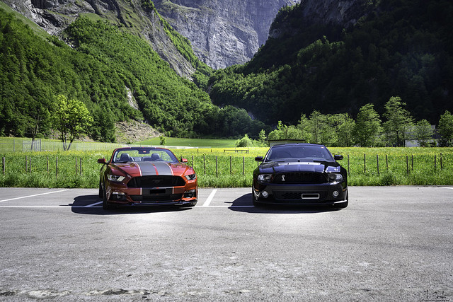 Mustang Photostopp in Tierfehd near Linthal - Glarus - Switzerland