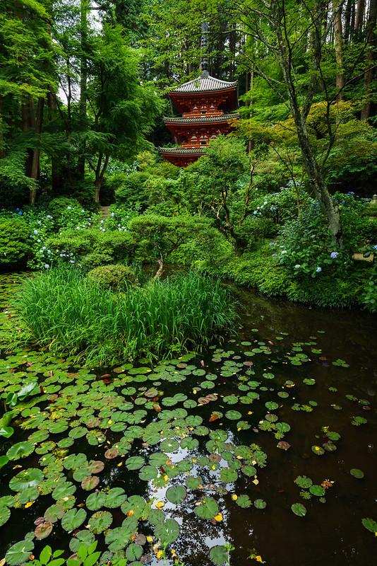 岩船寺 (Gansen-ji temple)