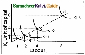 Samacheer Kalvi 11th Economics Guide Chapter 3 Production Analysis img 10