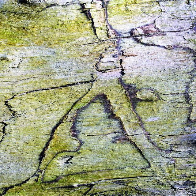 Indecipherable nature