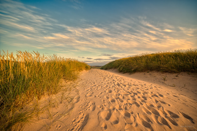 The dunes of Melvich Beach.