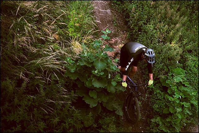 Stefan_Bike_SAS_3992