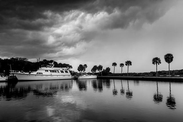 70d-7051  Marineland, FL