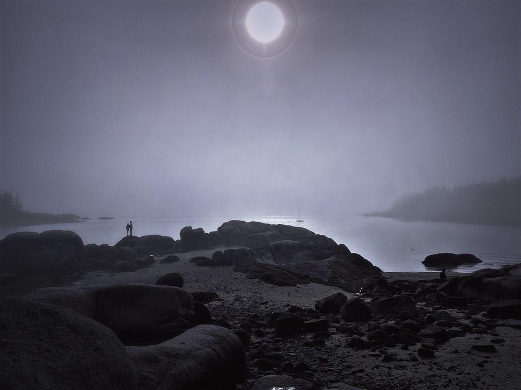 Fog, Deer Isle, Maine