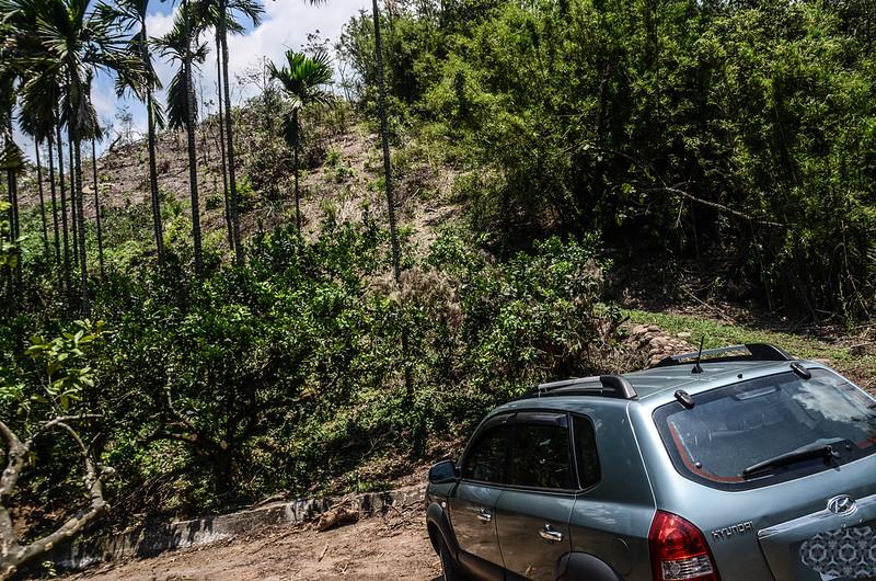 楓樹龍(魚藤坪山)停車處登山口
