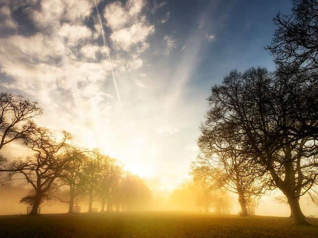 Lowther Dawn