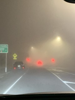 Foggy drive home after training | by b34r.girl