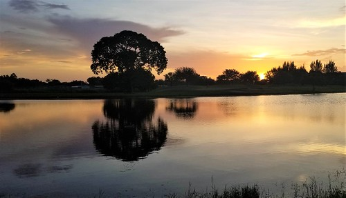 sunset sunsetbythewater sunshinestate