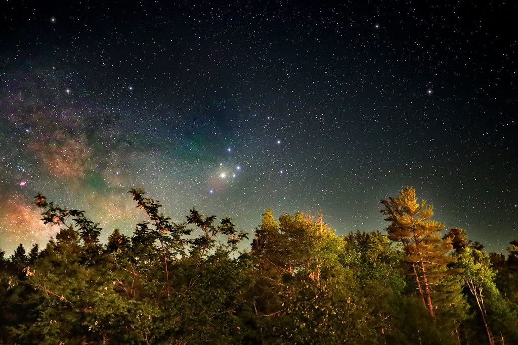 Night Landscape Milky Forest Canon Ra