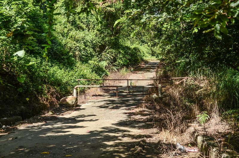 鯉魚潭(南片山)、枕頭山登山口