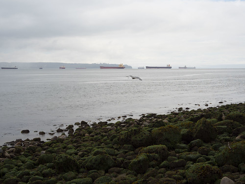 Freighters