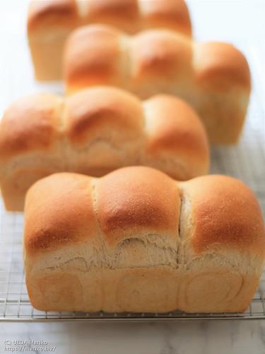 自家製酵母食パン 20200624-DSCT8096 (3)