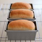 自家製酵母ミニ食パン 20200623-DSCT7951 (2)