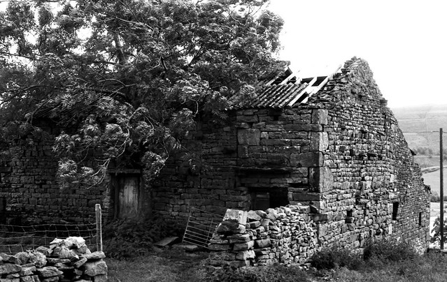 Another ruined barn in Raydale