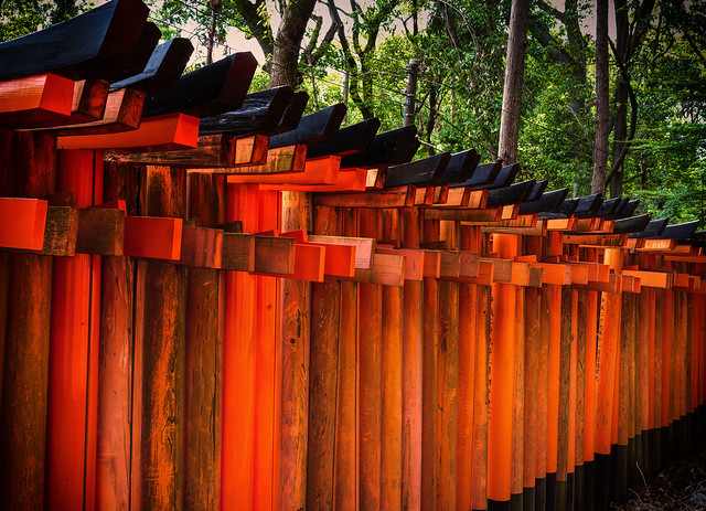Wall of torii