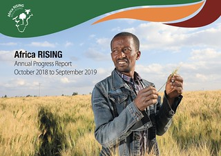 Africa RISING annual progress report 2018 - 2019 cover | by africarising