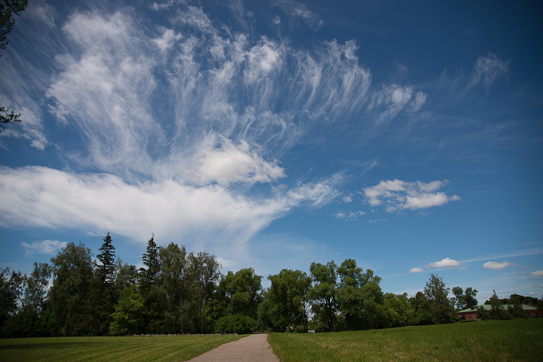 Тарханское небо. Фотозарисовки тарханских окрестностей А. Семенова. 25 июня 2020 года. Фото 4