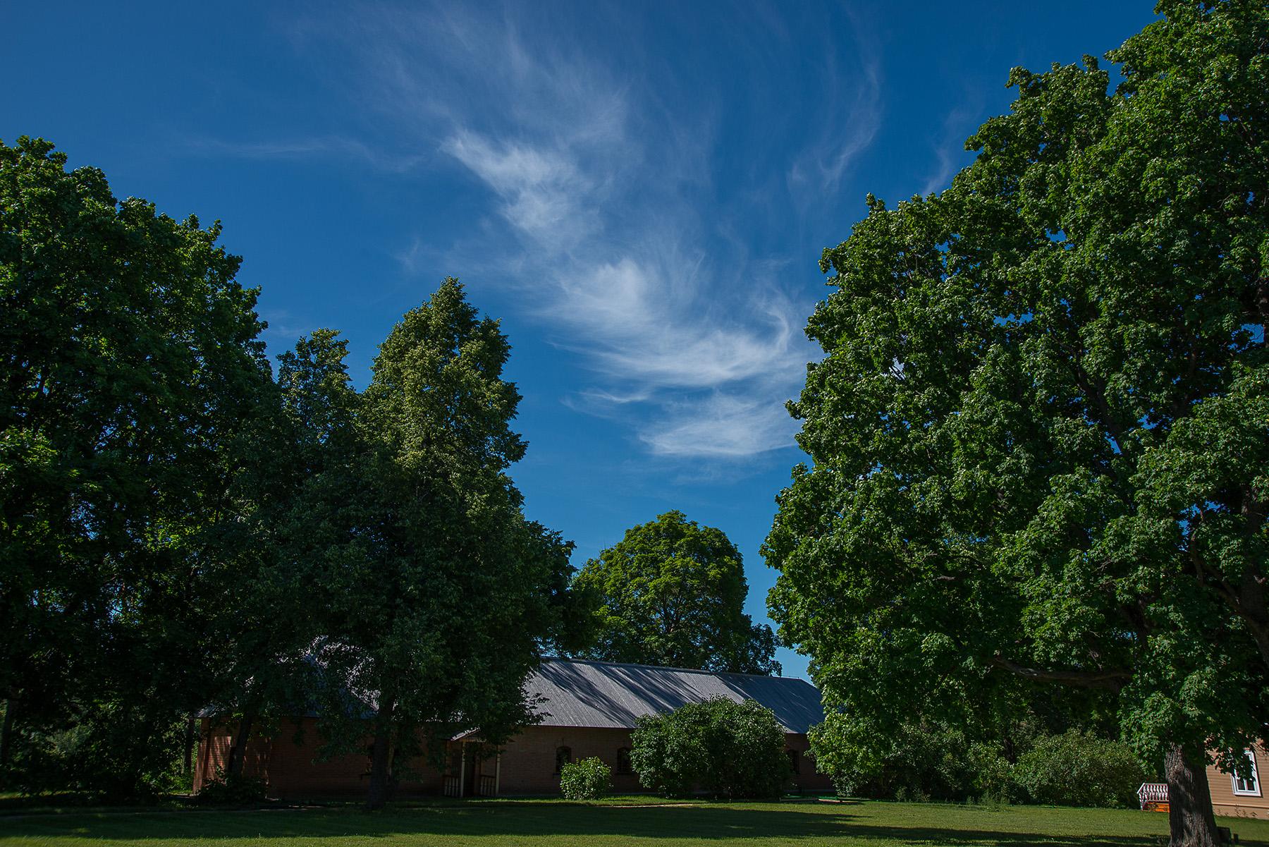 Тарханское небо. Фотозарисовки тарханских окрестностей А. Семенова. 25 июня 2020 года. Фото 2