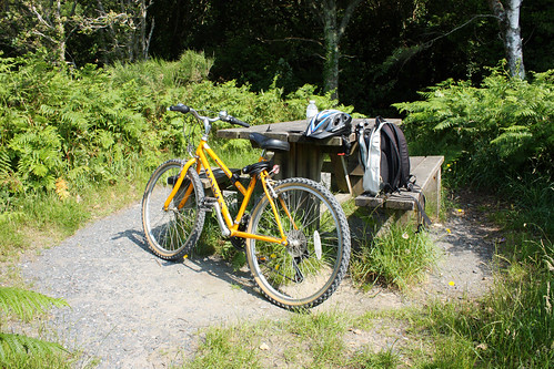 Bike & picnic table