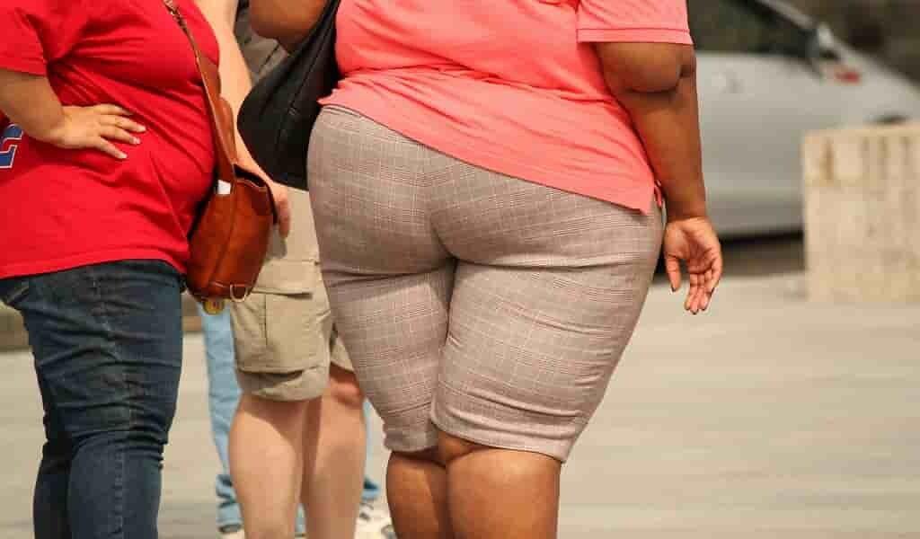 obésité-lié-à-un-risque-de-démence-plus-élevé