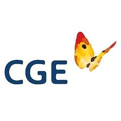 Coltauquinos realizar�n  demanda colectiva contra CGE
