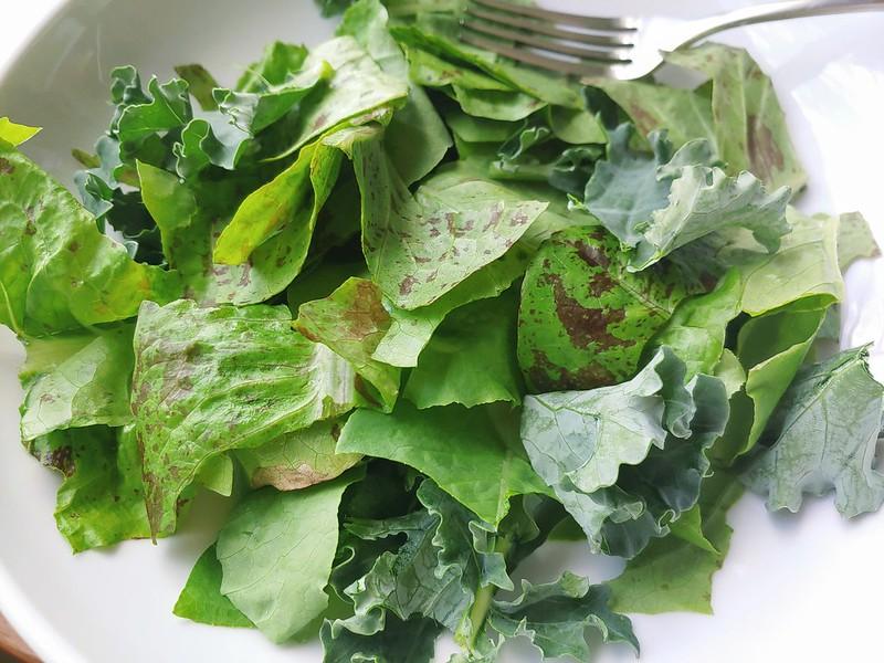 Garden Salad (a salad from the garden?)