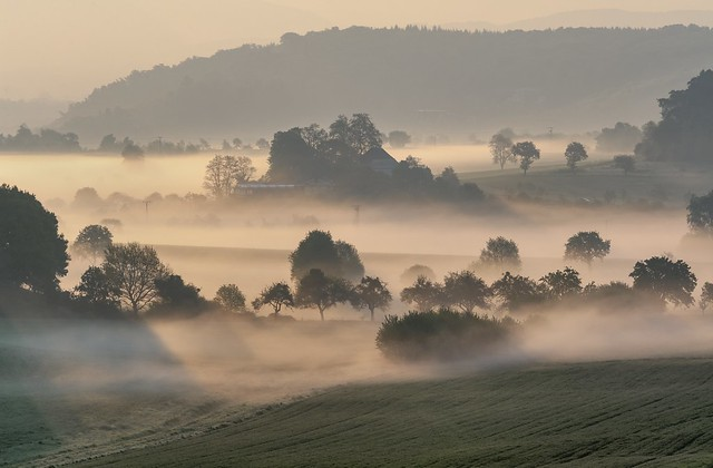 *golden hour in the valley of the morning mist II*
