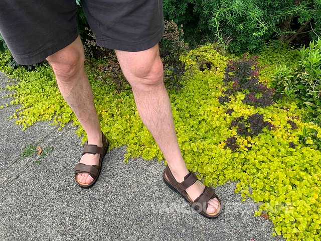 Naot sandals-4